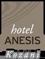 πολυτελη διαμονη Κοζάνη - Anesis Hotel